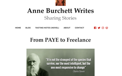 FROM PAYE TO FREELANCE – some excellent advice about taking the plunge from Anne Burchett